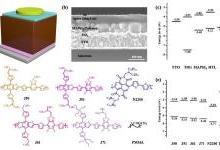 稳定高效的聚合物掺杂钙钛矿电池