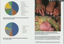 调查:25个国家半数女性体内水银超标