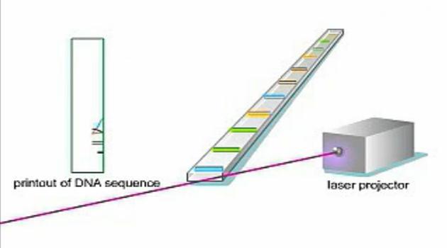 基因测序原理DNA Sequencing