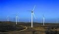 中海油收缩新能源 业内称不代表风电领域会消亡