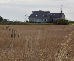 富士康投建美国液晶面板厂 征地补偿让农民变百万富翁