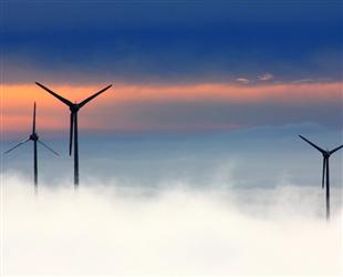 山东新能源发电稳步增长:风能规模最大