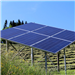 光伏复合发电项目包括农光互补、渔光互补发电项目等。对于光伏方阵设施布设在农用地上的,在对土地不形成实际压占、不改变地表形态、不影响农业生产的前提下,可按原地类认定,不改变土地用途。