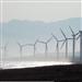【聚焦】滨海建成亚洲最大海上风电场