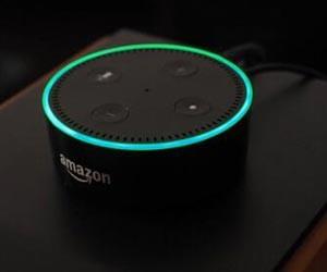 智能音箱销量出炉:亚马逊占称霸市场
