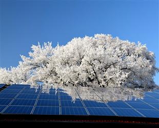 温岭家庭及村集体屋顶分布式光伏补助