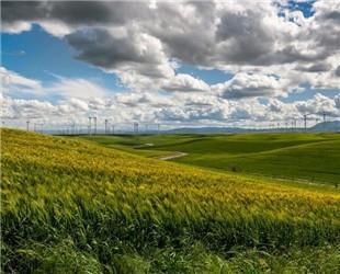 山西2018年新能源发电量同比增40