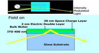 东京科学大学发现低成本光调制方法