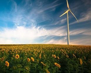 1-9月全国风电发电量同比增长8.9%