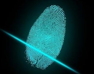 屏下指纹爆发在即 光学指纹方案或成主流?