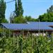 国家对分布式光伏发电项目按电量给予补贴,分布式光伏发电项目的中央财政补贴补贴对象为发电户。