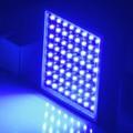 政策和技术驱动 UV LED市场增长加速