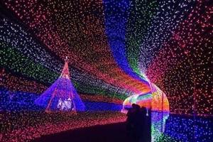 LED行業步入成熟期 創新成發展關鍵