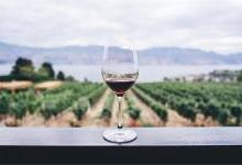 AI成葡萄酒行业新宠