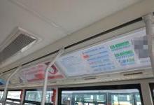 新都区首批新能源公交车投入使用