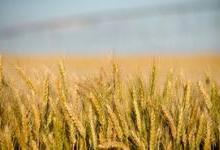 俄勒冈州希望回收数据中心用水灌溉农田