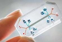 """如何用""""芯片""""打开精准医疗的想象空间?"""