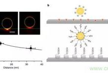 纳米级光纤应力传感器:用于分子和细胞水平