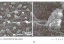 超疏水性材料在家电行业的应用前景