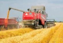 人工智能全面进驻农业领域,一大波机器人正在占领农田
