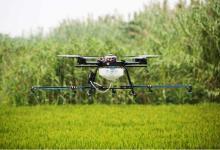 吴恩达都在做,AI农业到底有什么魔力?
