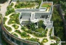 屋顶绿化:从地面走到屋顶有多远?