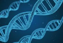 科学家研制新疫苗:能消灭/治愈癌症