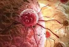"""患癌风险高发并非源于""""基因突变"""""""