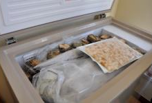 中国首位无霜冷柜用户诞生
