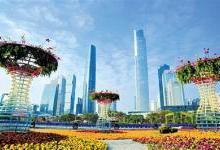 广州:晨起赏花 入夜广州塔上演激光秀