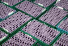 2017年锂电池产量117894.7万只