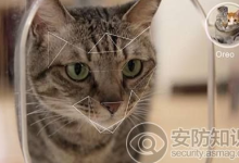 荷兰工程师自制猫脸识别门禁