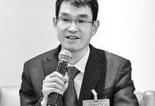 陈康平:建议尽快制定国家光伏标准