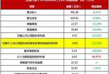 """虚盈利、实亏损,江淮汽车年报""""命系新能源"""""""