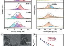 调控锂离子溶剂化层增强锂金属电池稳定性
