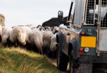 物联网在农业领域掀起巨大变革