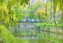 广州:2020年全面消除黑臭水体