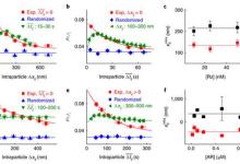 单纳米催化剂内部和之间的协同效应