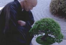 脑洞大开的设计 僧侣和花盆谈人生