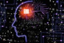 AI领域的下一个爆发点可能是工具平台