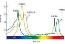 植物工厂补光照明方法现状与趋势分析