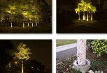 """进击的""""抱树灯"""" 解锁景观照明新玩法"""