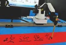 机器人集体亮相数字中国建设成果展