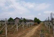 湖南常德石门县最美光伏葡萄园11kW完工