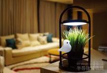 伟圣靠着LED植物灯拓展照明产业新蓝海