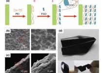 非共价官能化氧化石墨烯涂层:提高聚合物薄膜的热稳定性和阻燃性能