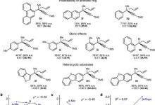 哈佛大学最新Nature:对映体催化SN1反应构建四元立体中心