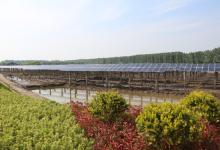 江苏镇江扬中为世界提供绿色能源案例