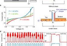中科院北京纳米能源所王中林团队:超短沟道的压电电子学晶体管