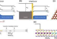 通过六方氮化硼隧穿触头介导的2D异质结构中的本征输运